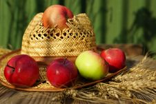 Free Composition With Apples, Stalks And Straw Hat. Royalty Free Stock Image - 33106196