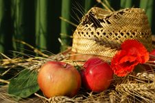 Free Apples, Wheat, Poppy And Hat Stock Photo - 33106630