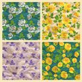 Free Set Of Vector Seamless Pattern With Roses, Craft P Stock Photos - 33113333