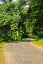 Free Winding Path In City Park Vertical Royalty Free Stock Image - 33117036