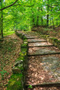 Free Winding Stone Steps With Foliage Vertical Royalty Free Stock Photo - 33117295