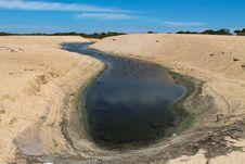 Free S Shaped Pool On A Sunny Beach Royalty Free Stock Photo - 33113535