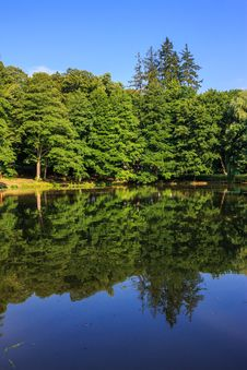 Free Lake Reflections In A City Park Vertical Stock Images - 33117004