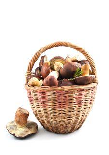 Free Basket Mushrooms Royalty Free Stock Photography - 33122147