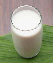 Free Milk Stock Photography - 33148412