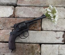 Free Gun With Bunch Of Flowers Stock Photography - 33184062