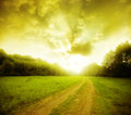 Free Road Through The Field Royalty Free Stock Photography - 33199537
