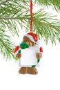 Free Santa Bear Ornament With Sign Stock Image - 3322141