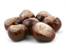 Free 7 Lucky Chestnuts Royalty Free Stock Images - 3320529
