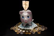Piggy Bank With Money And Coins Stock Image