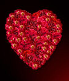 Free Love Royalty Free Stock Image - 3321186