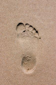 Free Footprint Royalty Free Stock Image - 3321786