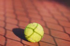 Tennis Ball Stock Photography