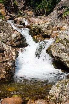 Free Mountain Stream Royalty Free Stock Photo - 3324545