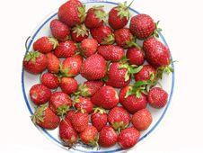 Free Dessert Stock Image - 3327671
