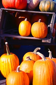 Free Pumpkins In An Old Wagon Stock Images - 3327784
