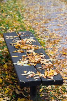Free Old Bench In A Park Royalty Free Stock Image - 3328366
