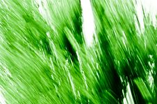 Free Green Texture 598 Royalty Free Stock Photography - 3329427