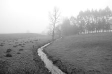 Free Fog And Silver Stream Royalty Free Stock Photography - 3329637
