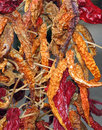 Free Dried Red Chillies Royalty Free Stock Images - 33226069
