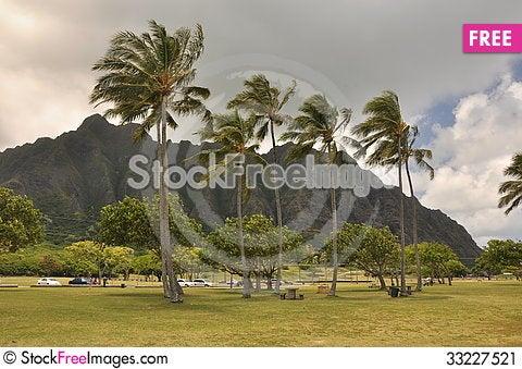 Free Hawaii Mountain Stock Image - 33227521