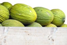 Free Melons Stock Photos - 33226103