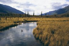 Free Alaskan Backcountry Valley Royalty Free Stock Images - 33226859