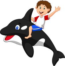 Free Boy Cartoon Riding Orca Stock Photography - 33231092