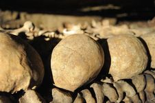 Free Catacomb Suture Stock Photography - 33245652