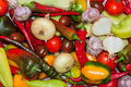 Free Group Of Fresh Vegetables Royalty Free Stock Photo - 33268245