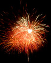 Free Firework Showing Stock Photography - 3333972