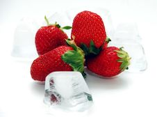 Free Strawberry Fruits Stock Photography - 3330772