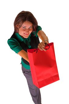 Free Lady And Shopping Bag Stock Images - 3331324