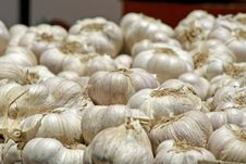 Free Garlic On Display Stock Photos - 3331343