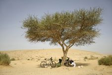 Free Cyclists Under Tree In Desert Stock Photos - 3331453