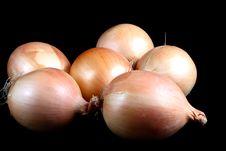 Free Onions Stock Image - 3332231