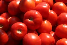 Free Tomatoes At Market Royalty Free Stock Images - 3333009