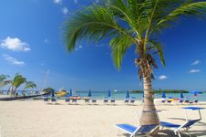 Free Beach Stock Images - 3334904