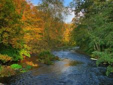 Free Colorful Autumn River Stock Photography - 3336262