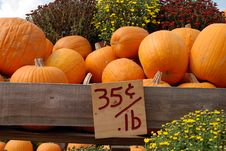 Free Pumpkins For Sale Royalty Free Stock Photos - 3336868