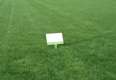 Free Fresh Green Grass Background Royalty Free Stock Photos - 3338588