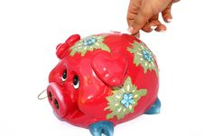 Free Piggy Bank Royalty Free Stock Images - 3338869
