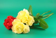 Red And Yellow Roses Stock Images