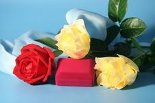 Free Roses And A Box Stock Images - 3339644