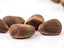 Free Cedar Nuts Royalty Free Stock Photo - 33304365