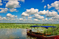 Free A Boat In Lotus Pond Stock Photo - 33317460