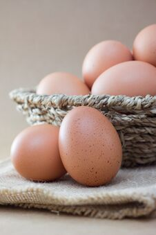 Free Eggs Stock Photos - 33311253