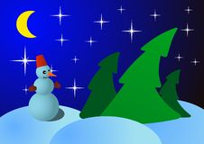 Free Snowman On Christmas Night In The Woods Stock Image - 33318221