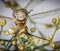 Free Dragonfly Head Macro Closeup And Small Flowers Stock Photos - 33311803