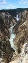 Free Yellowstone Lower Falls Panorama 2 Stock Images - 33321354